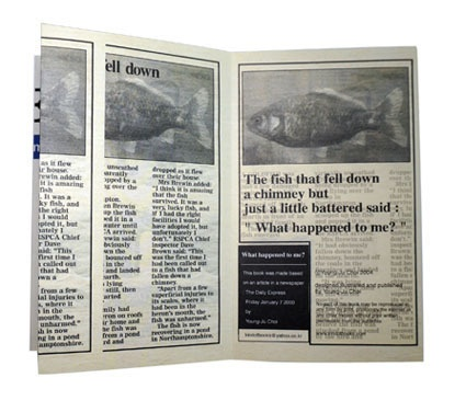 The Fish That Fell down a Chimney Is Just a Little Battered / DAILY EXPRESS thumbnail 3