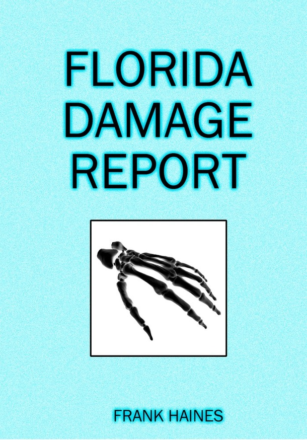 Florida Damage Report thumbnail 1