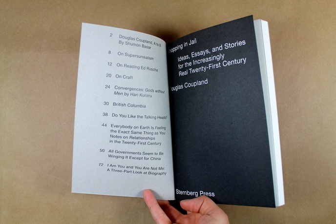 Shopping in Jail : Ideas, Essays, and Stories for the Increasingly Real Twenty-First Century thumbnail 2