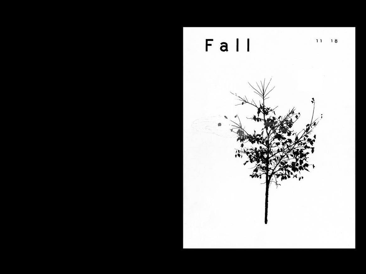Fall thumbnail 1