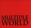 Multiple World : An International Survey of Artists' Books