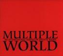 Multiple World : An International Survey of Artists' Books