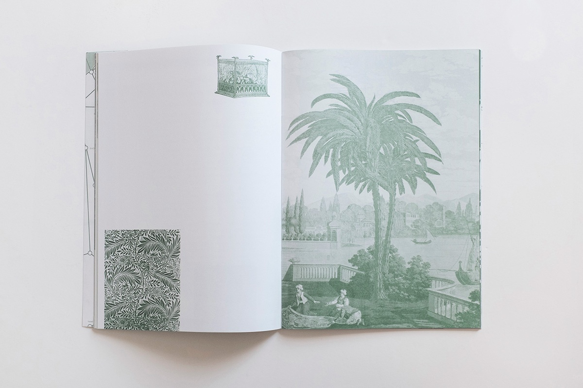 Palm Tree Studies in South Tyrol and Beyond thumbnail 3