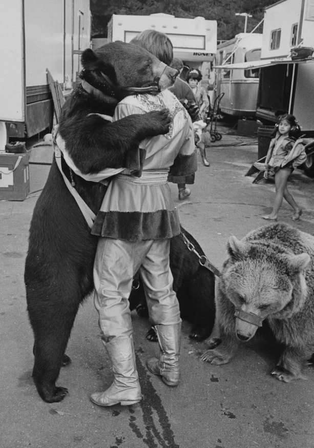 Huggy Bear, 2016