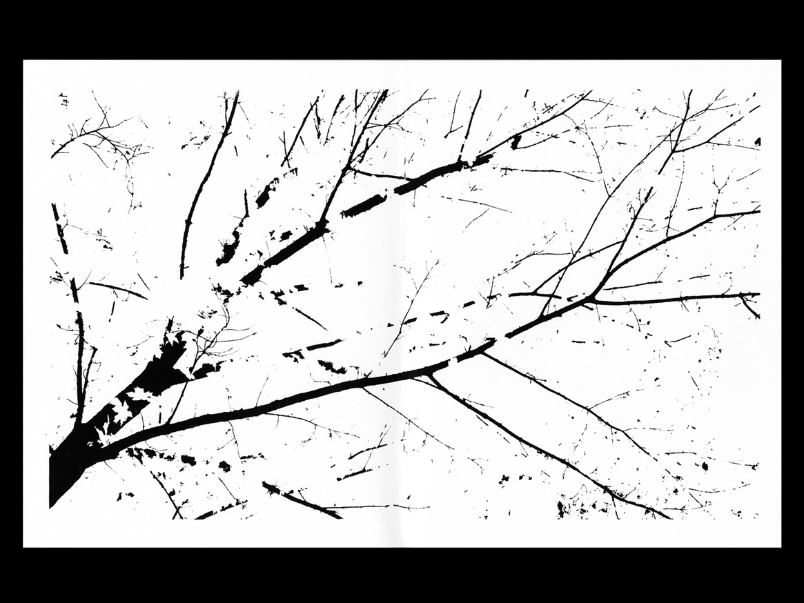 Fall thumbnail 3