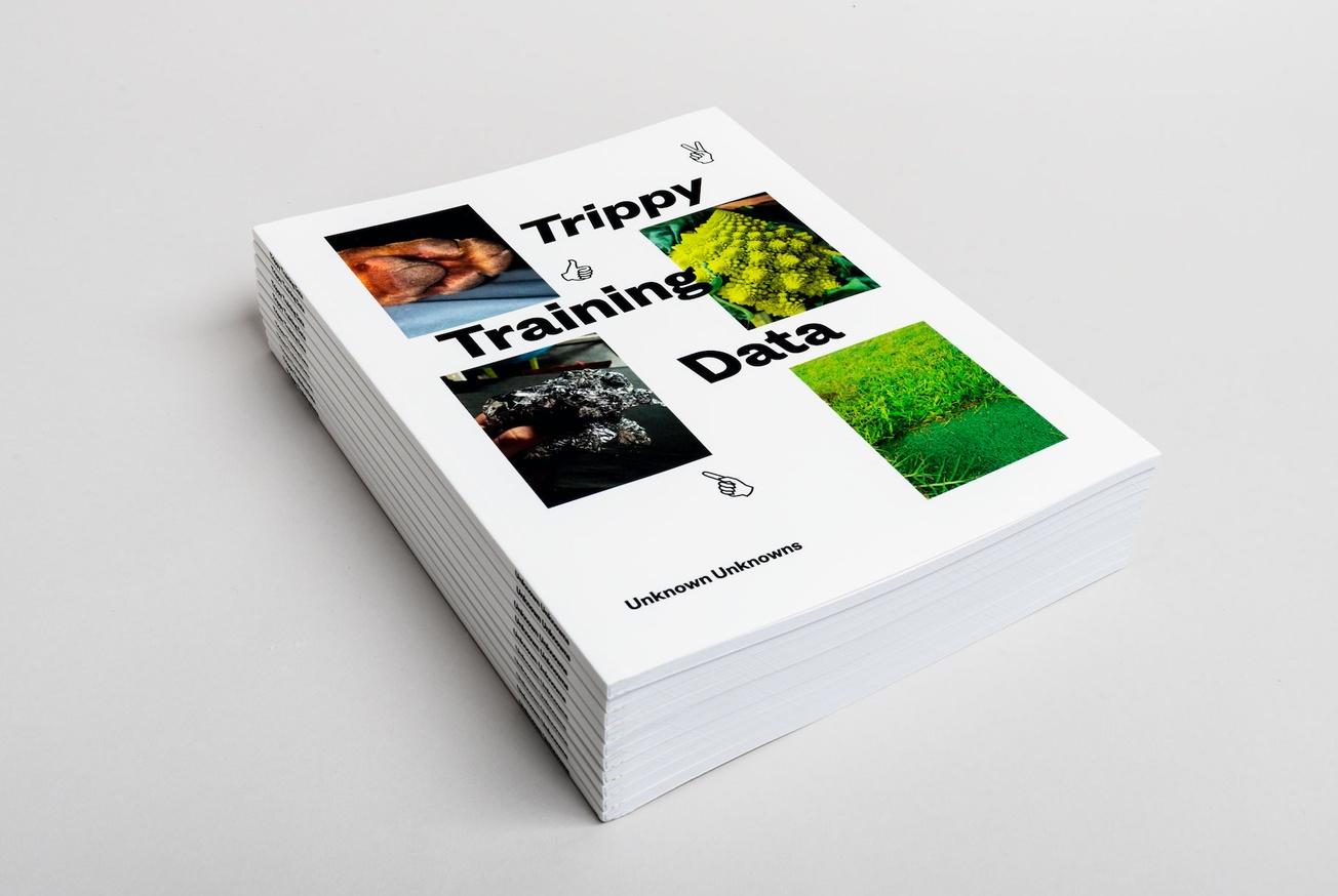 Trippy Training Data thumbnail 7