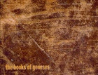 The Books of Geneses