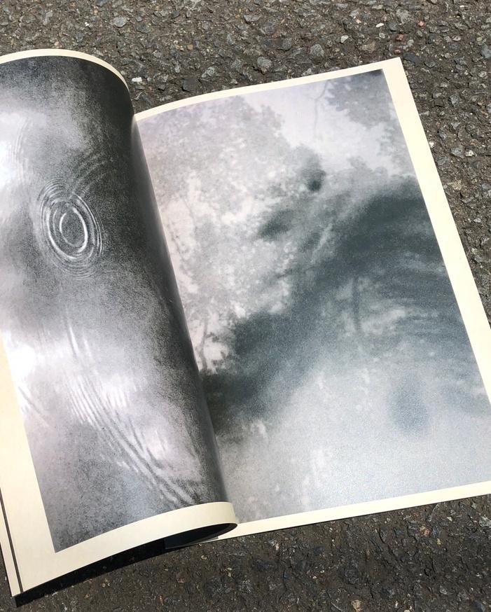 The Garden of Photographs thumbnail 8