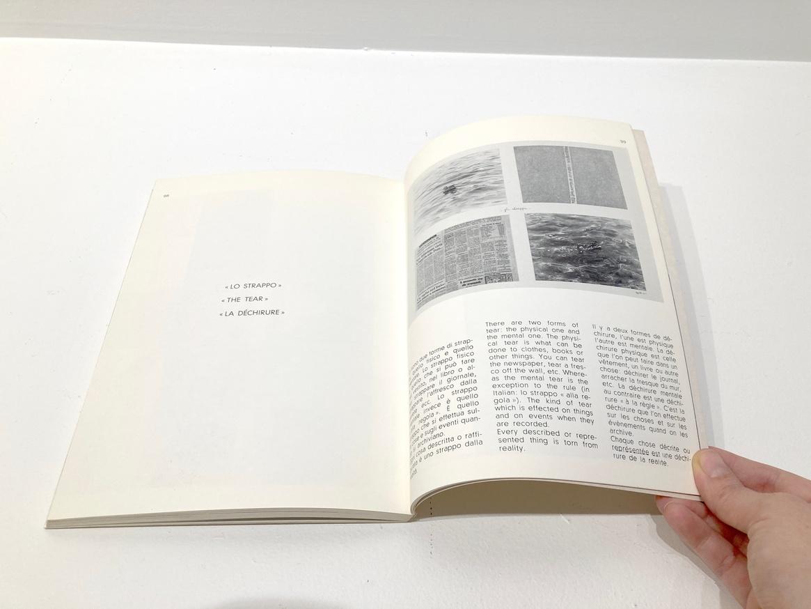 Libro (particolare) thumbnail 7