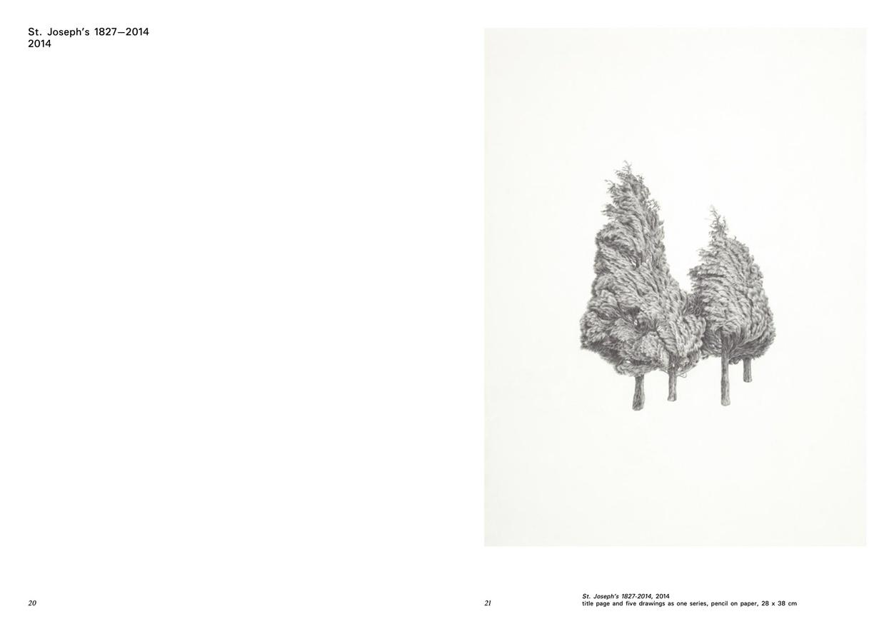 Ann Bottcher: Works 2000-2020 thumbnail 4