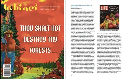 Cabinet Magazine cover