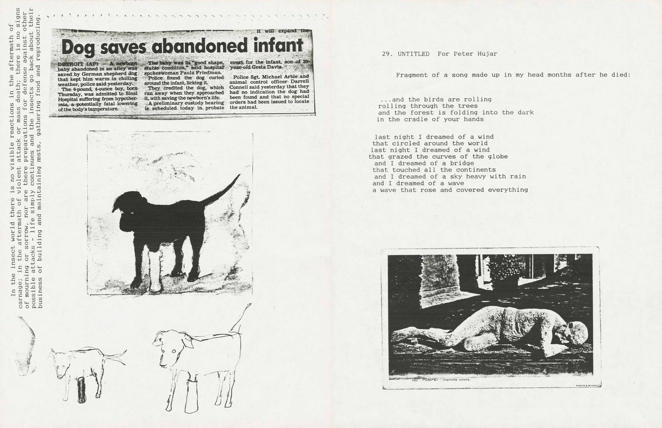 David Wojnarowicz: In the Shadow of Forward Motion thumbnail 8