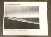 Pelican State Beach