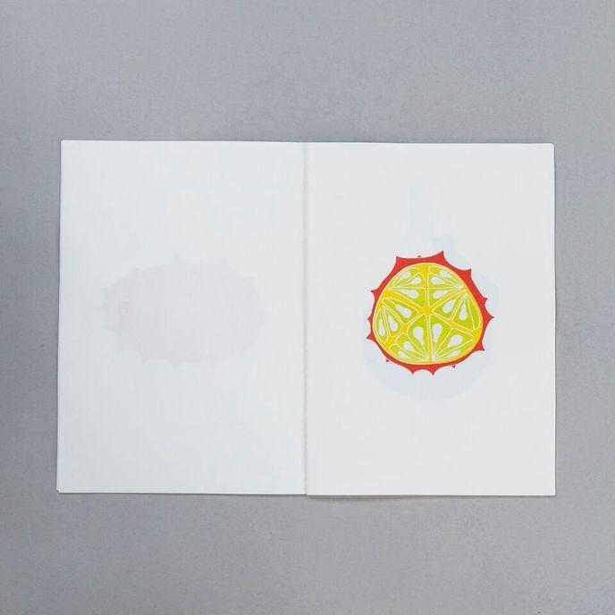 STRANGE, Vol. 1 : Fruits thumbnail 7