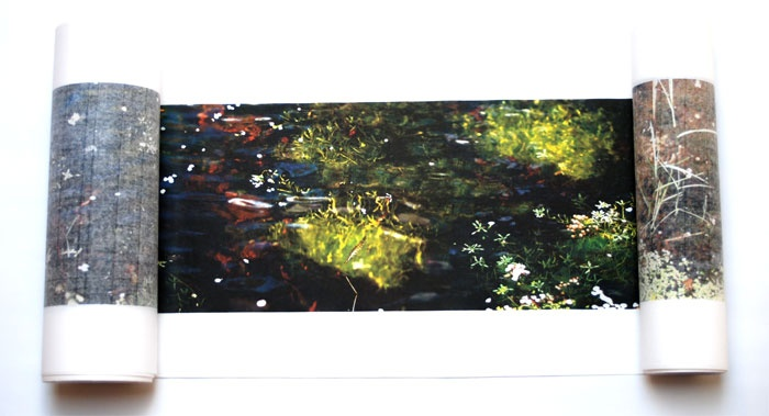 The Pond at Deuchar thumbnail 4