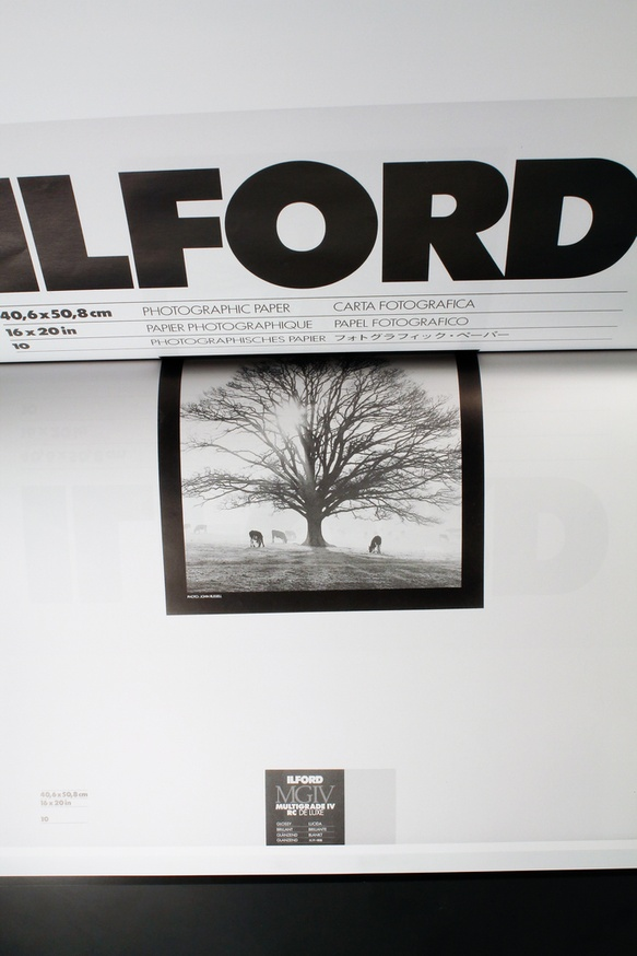 Complete Ilford Works thumbnail 4