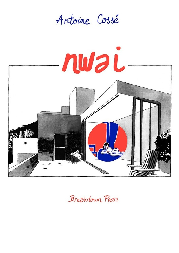 NWAI thumbnail 1