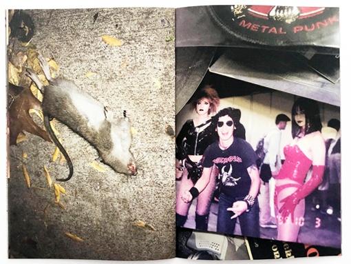 Dicks, Dogs, Rats, Men and Me thumbnail 6