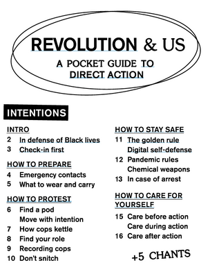 Revolution & Us: A Pocket Guide to Direct Action