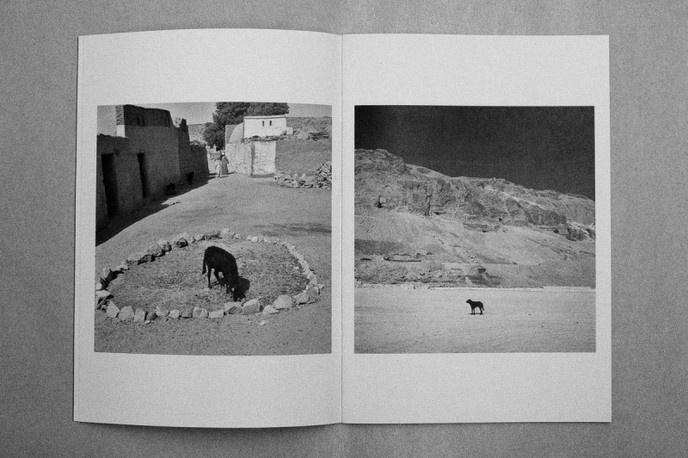 Egypt 1963 One thumbnail 3