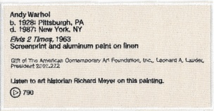 Permanent Collection Canvas Patch: Andy Warhol