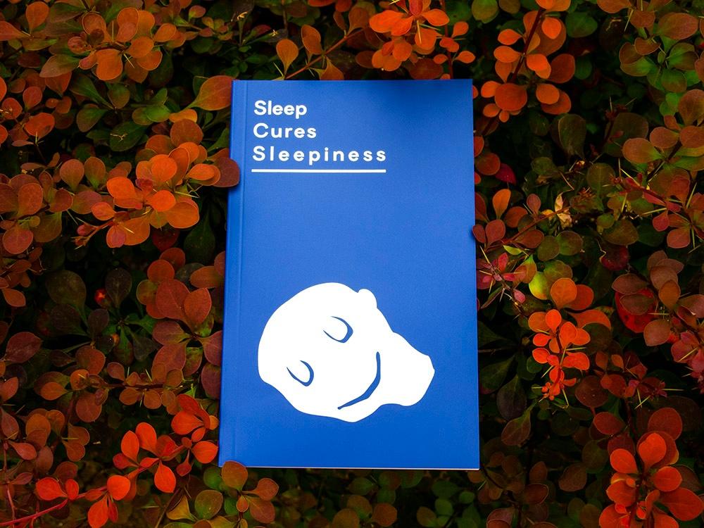 Sleep Cures Sleepiness