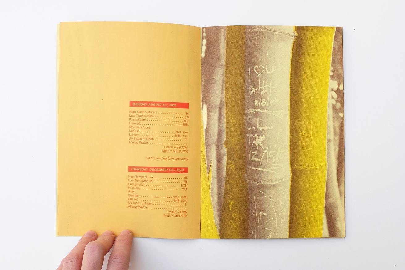 WRITTEN NAMES #3: Names and Dates Carved into Bamboo, San Marino, California thumbnail 2