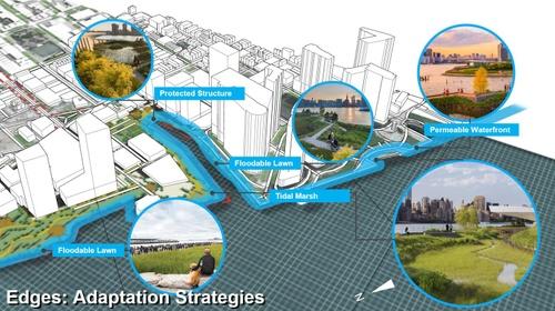 Edges. Adaptation strategies.jpg