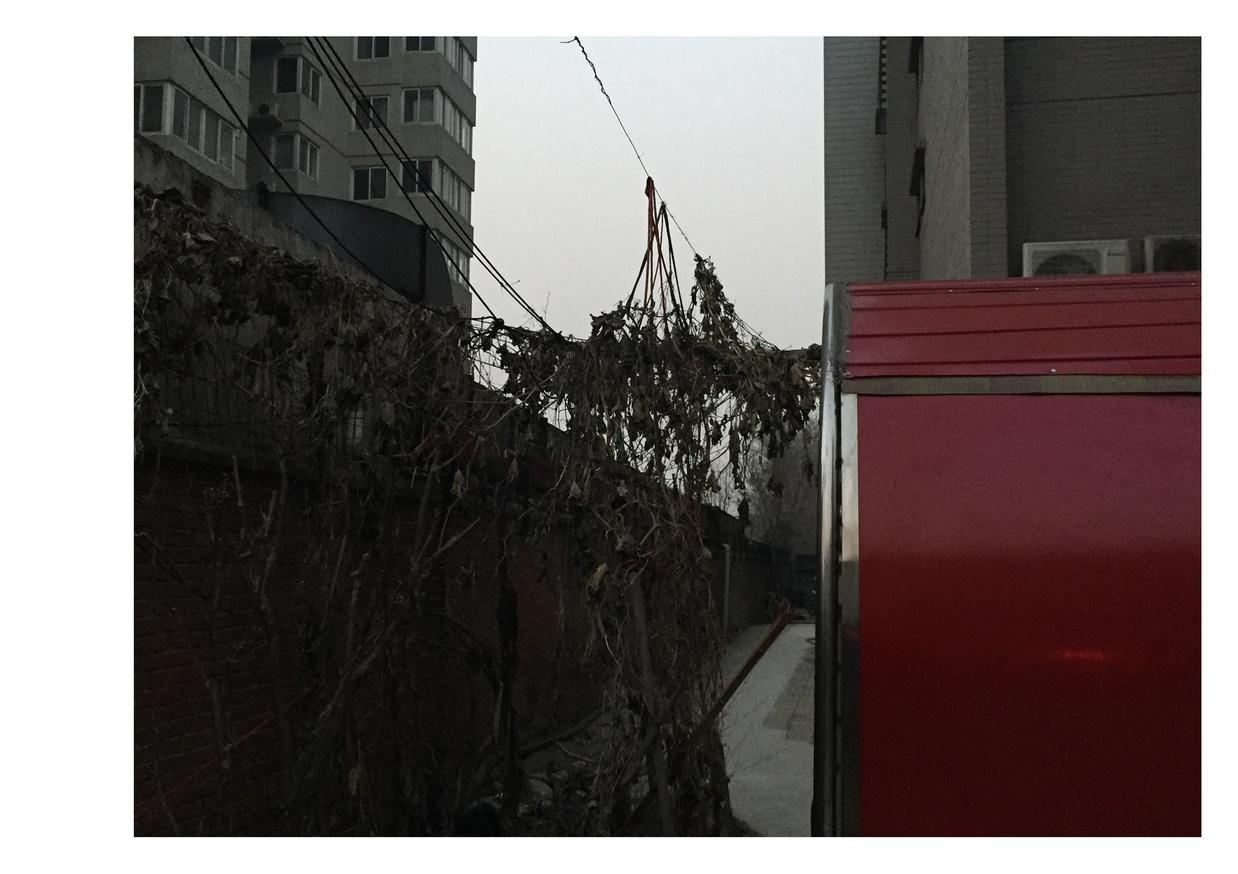 Wo De Xi Shi thumbnail 2