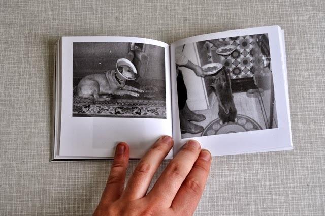 Ulvehund, No. 1 thumbnail 5