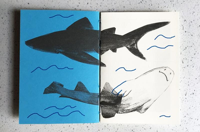 Sharks thumbnail 2