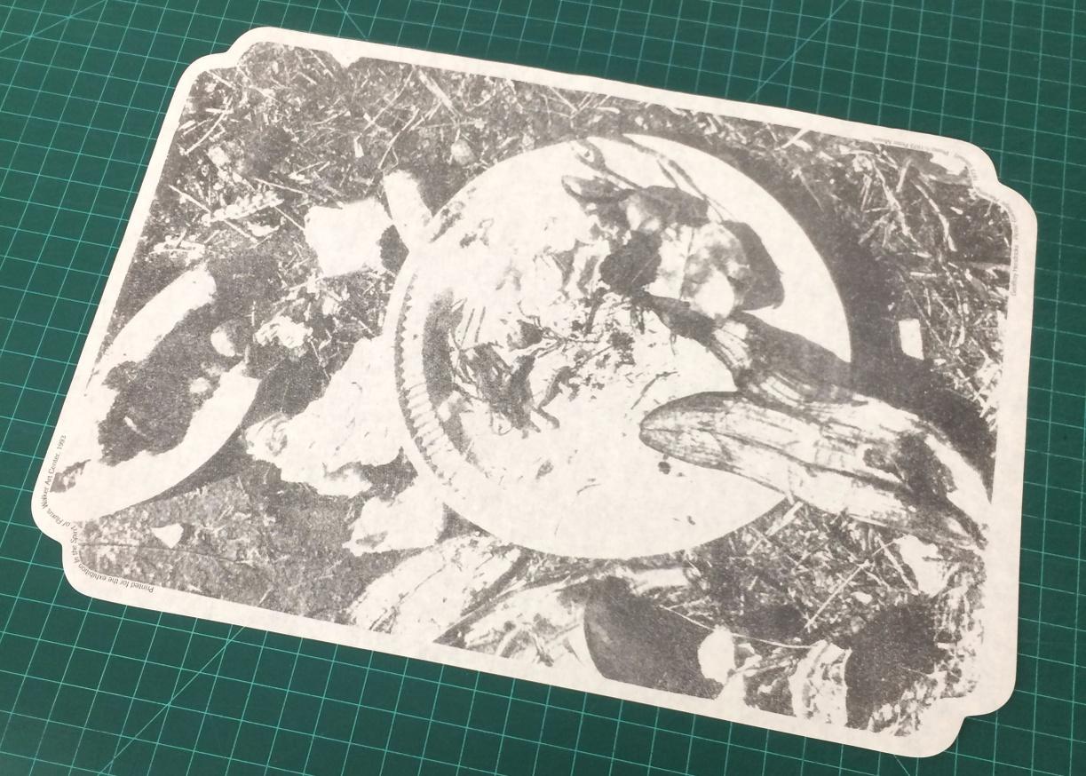 Picnic Garbage Placemat [Paper] thumbnail 2
