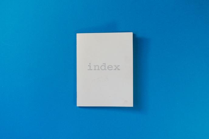Index thumbnail 3