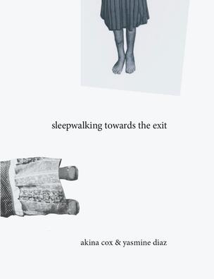 Sleepwalking Towards The Exit