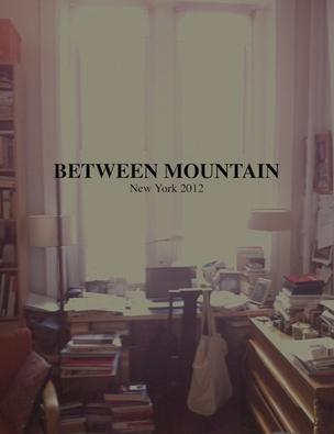 Between Mountain : New York 2012