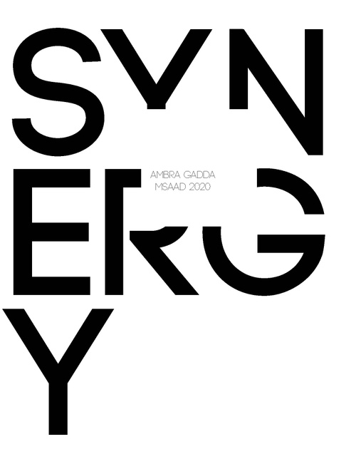 AAD GaddaAmbra SP20 Portfolio.pdf_P1_cover.jpg