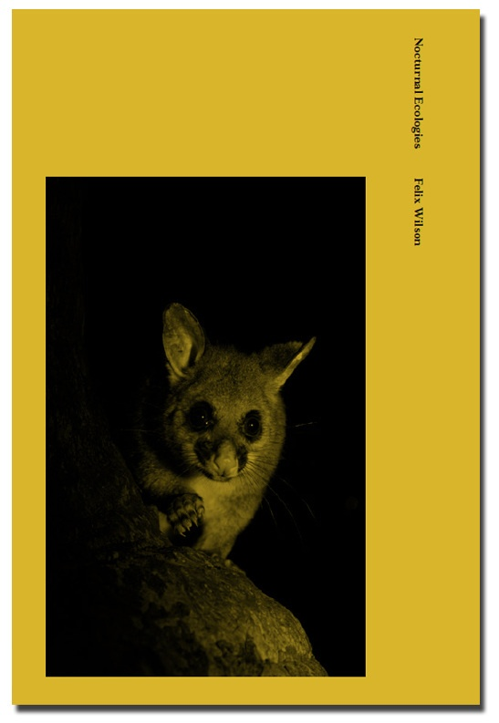 Nocturnal Ecologies