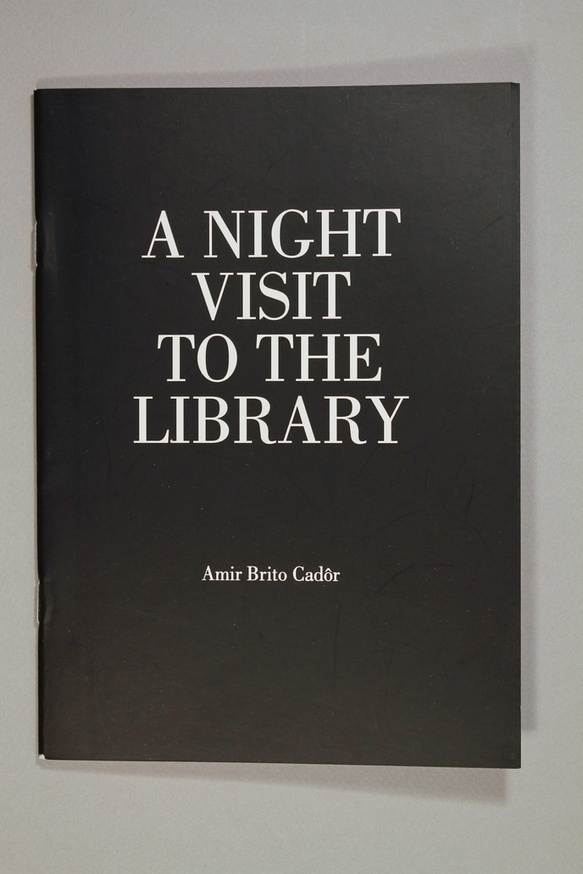 A Night Visit to the Library thumbnail 2