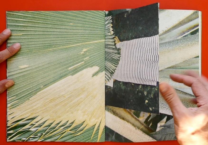 Palmeral  thumbnail 3