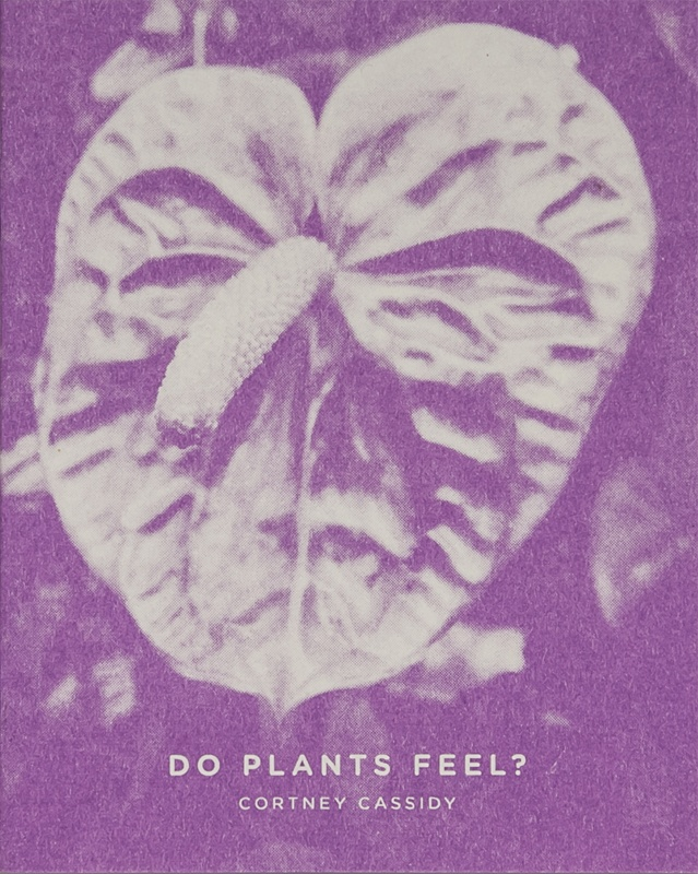 Do Plants Feel?