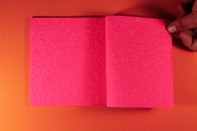 Pink Paper thumbnail 3