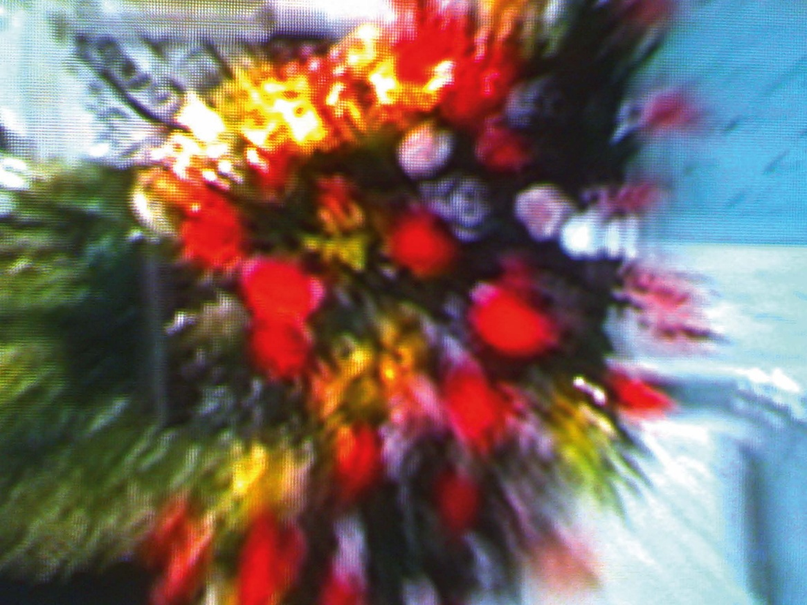Television Flowers thumbnail 5
