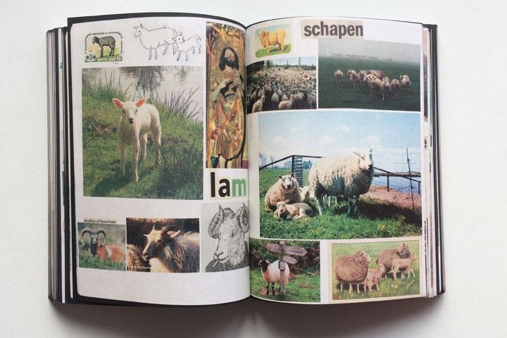 Animal Books For Jaap Zeno Anna Julian Luca thumbnail 4