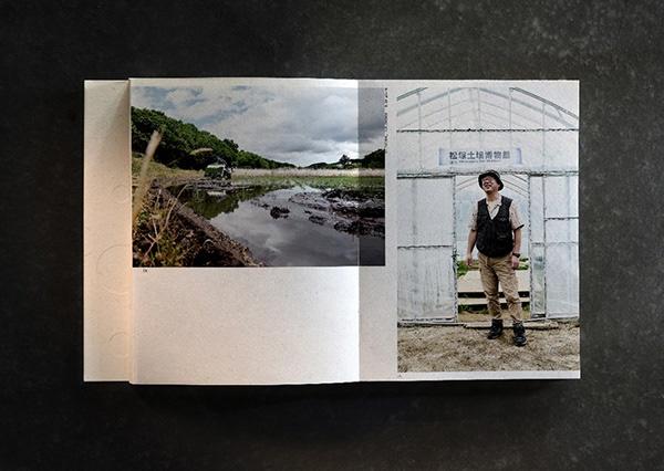 Made in Fukushima thumbnail 4