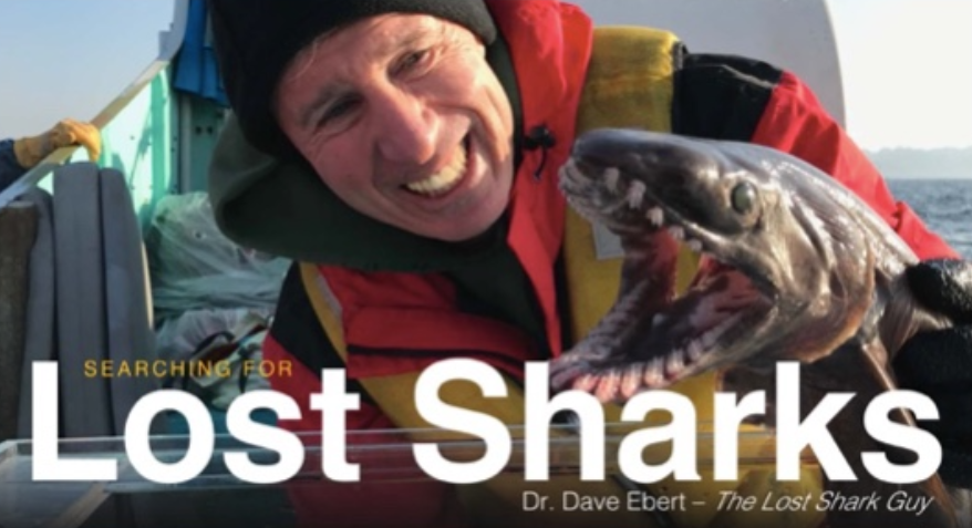 Searching for Lost Sharks - February 22, 2018 7:30 - 9 pm Pacific Grove Public