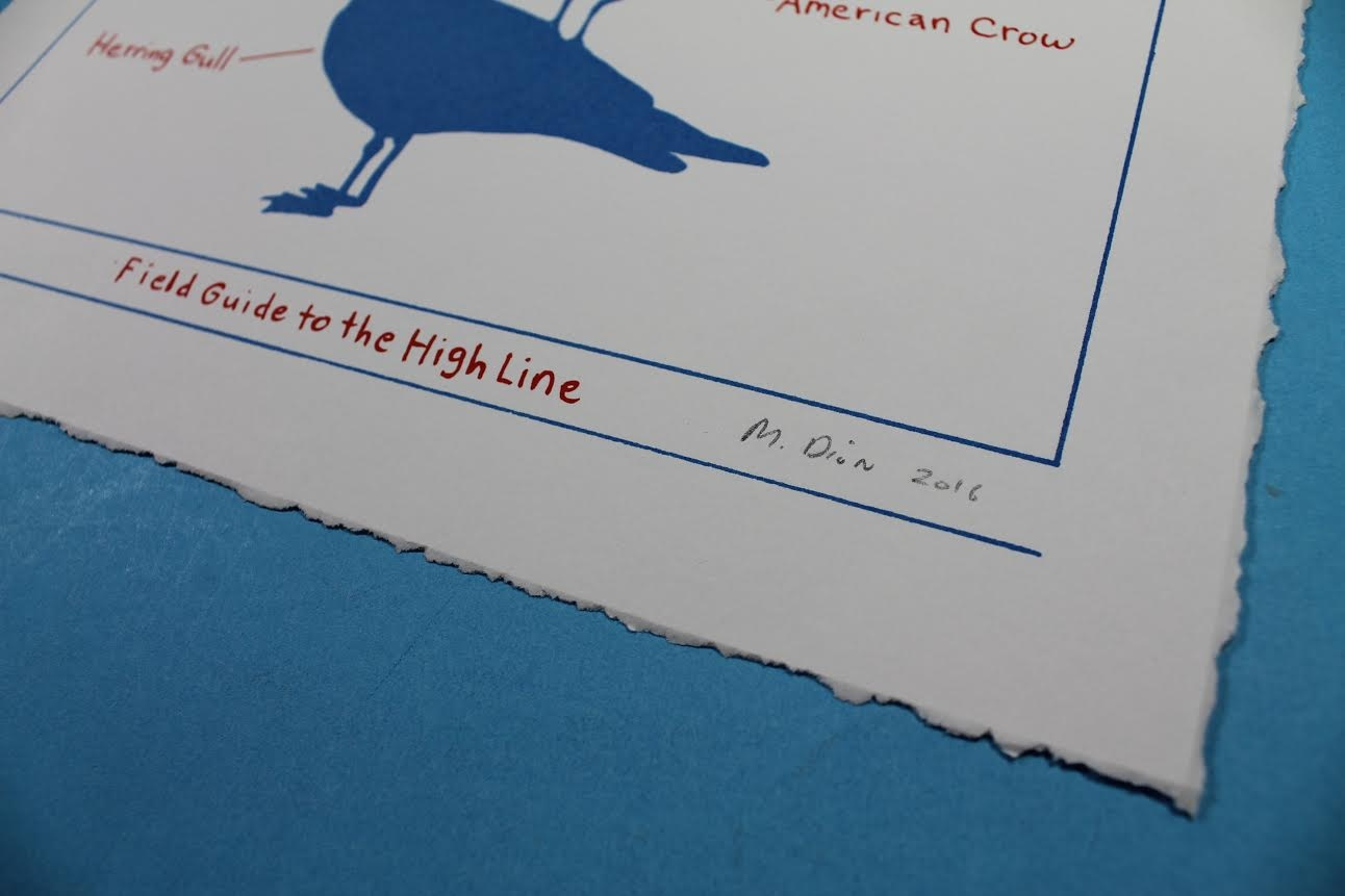 Birds of the High Line thumbnail 4