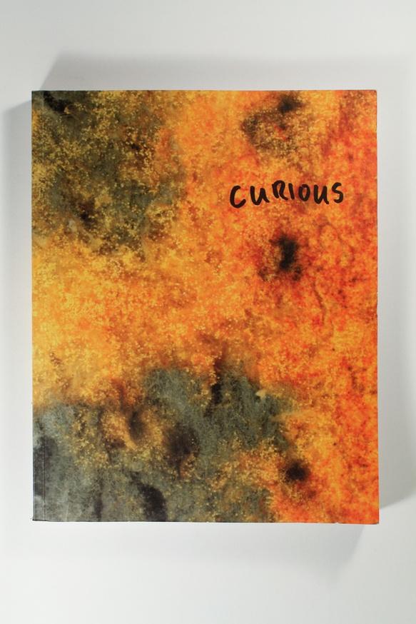 Curious thumbnail 4
