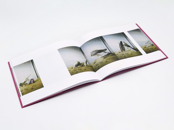 Photographs of Sculptures thumbnail 2