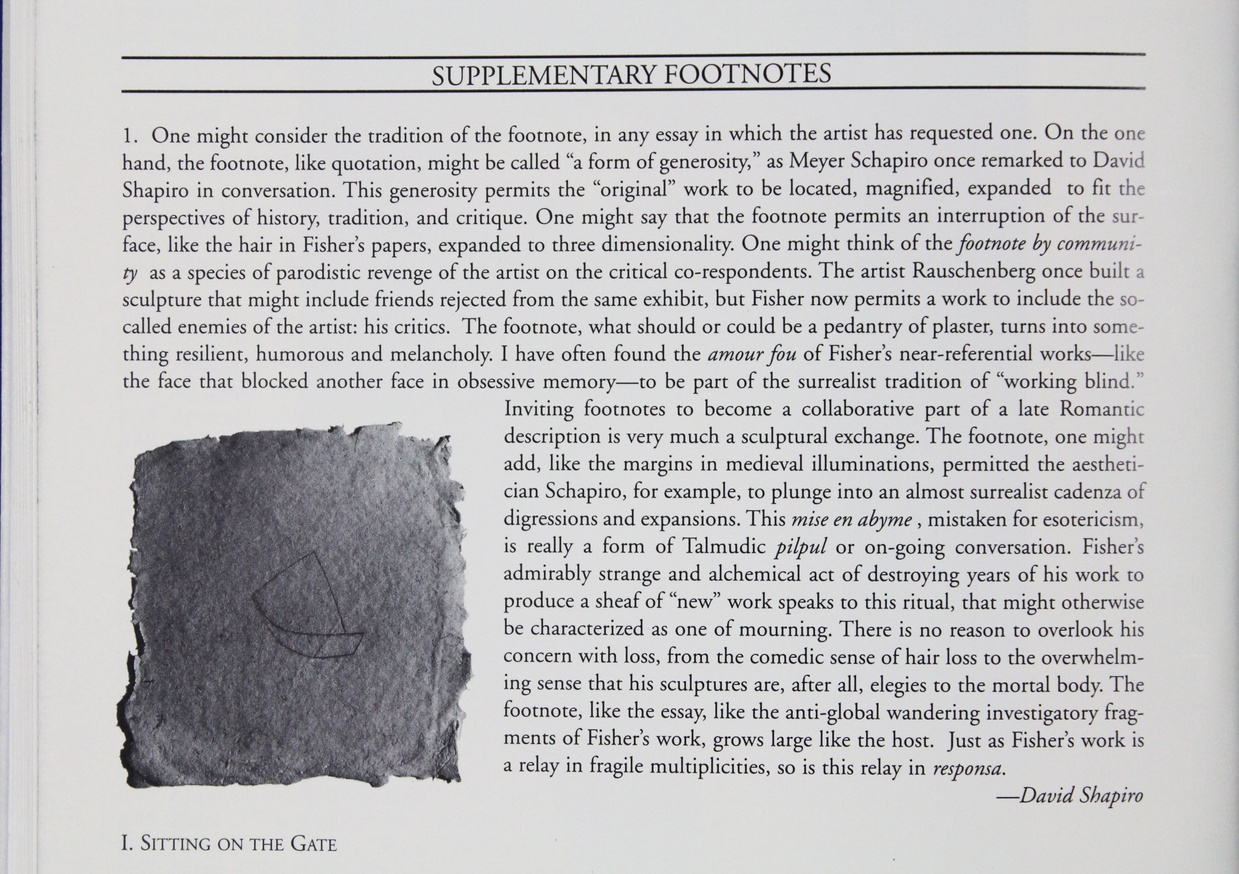 Joel Fisher : Text : with Forty-One Footnotes thumbnail 6