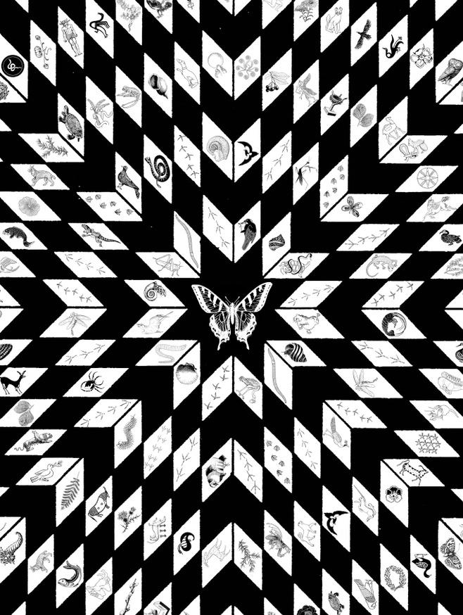 Wandering Star [Screen Print]